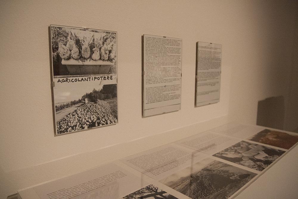 Immagine dell'installazione di Baruchello