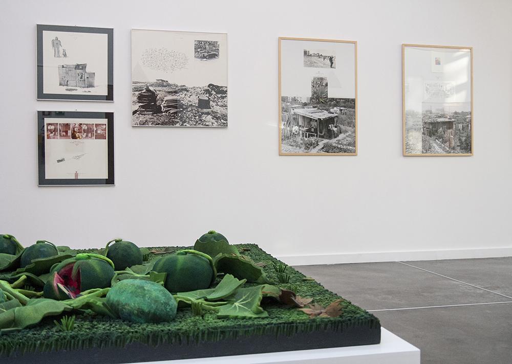 Fotografia dell'allestimento della mostra, con in primo piano un tappeto-natura di Gilardi e le opere di La Pietra sullo sfondo