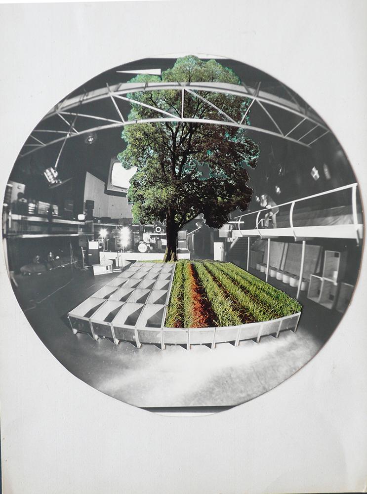 Immaggine dell'opera dei 9999, fotomontaggio e collage
