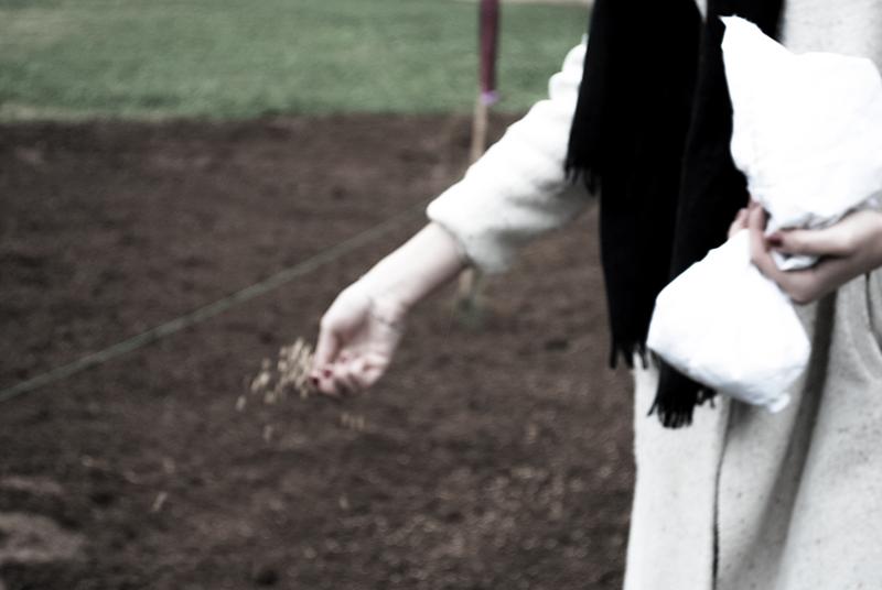 Workshop La Passione del grano, la semina