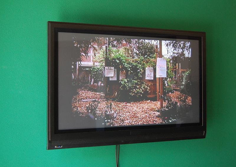 Immagine di uno still da video dei giardini di Boston
