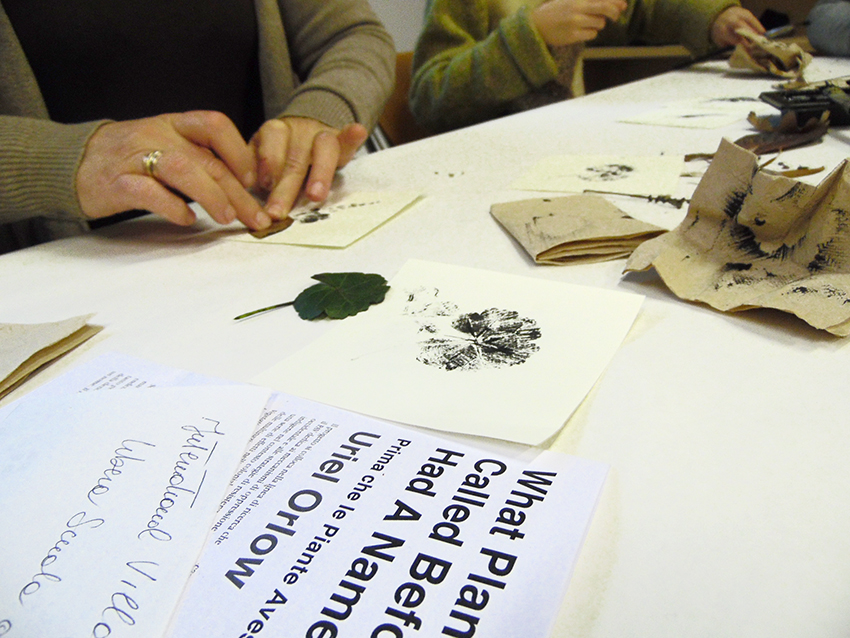 Libera Scuola del Giardino, Domenica=Workshop
