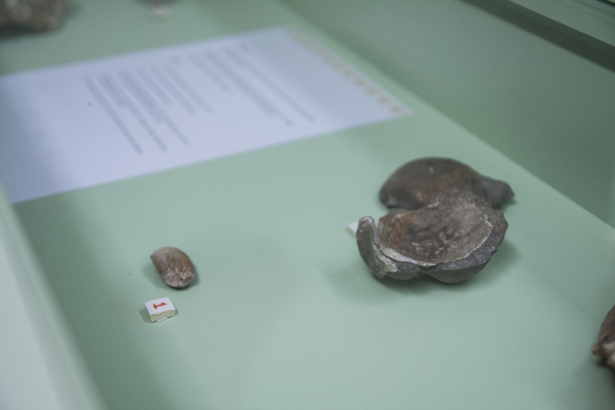 veduta dell'installazione di Myvillages, Made in Zvizzchi, nel dettaglio minerali