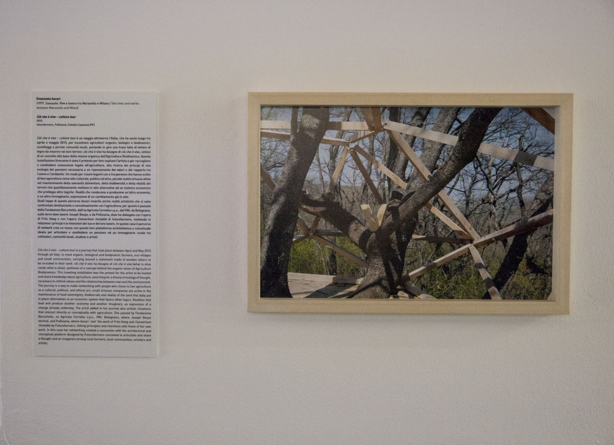 Intervento realizzato a Pollinaria, Civitella Casanova (PE) nel 2015 sul lavoro dei Futurefarmers