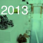 archivio mostre 2013
