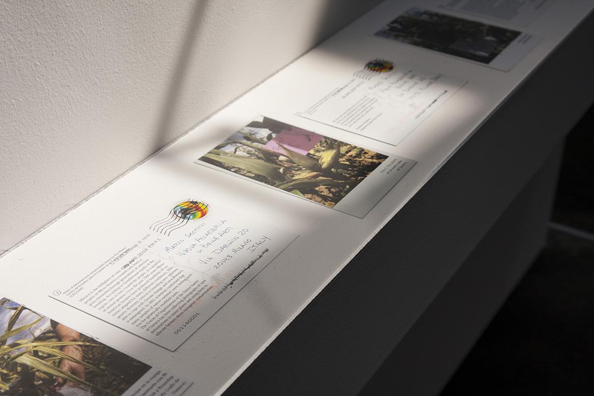 Fotografie di cartoline che l'artista ha inviato al curatore della mostra