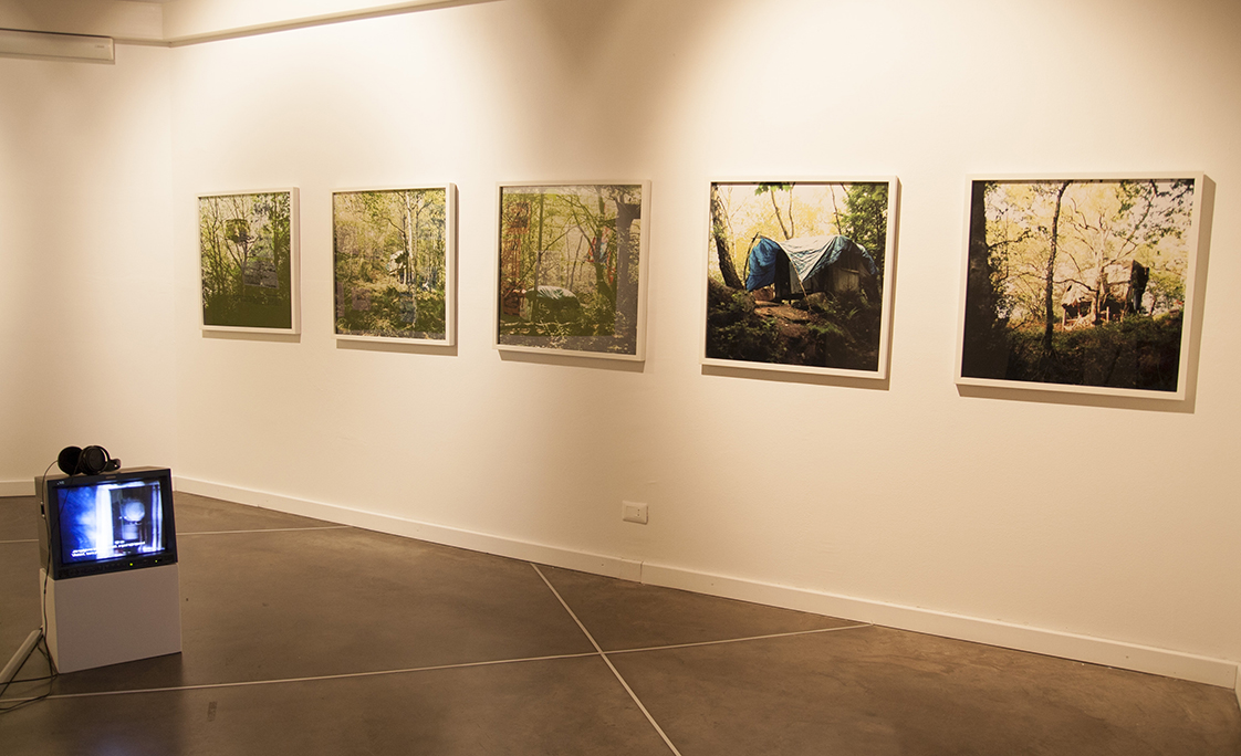Serie di fotografie nel bosco, appese a muro