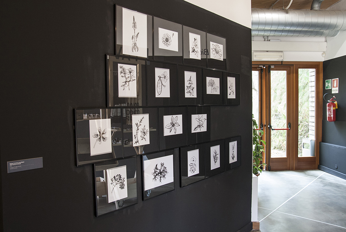 Libera Scuola del Giardino, disegni