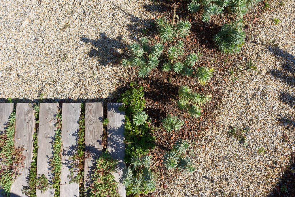 Gilles Clement, Jardin Mandala, 2010