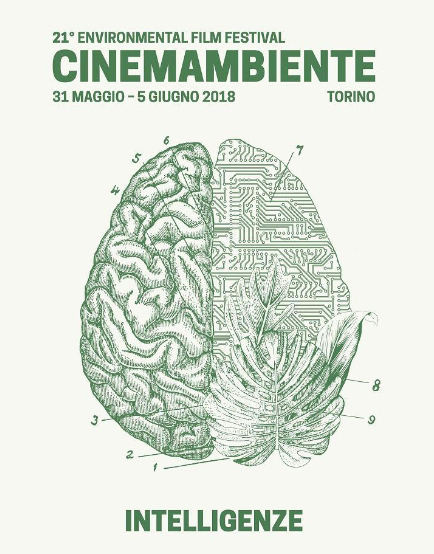 cinemambiente18