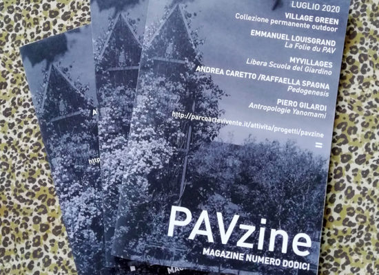 PAVzine12_WEB